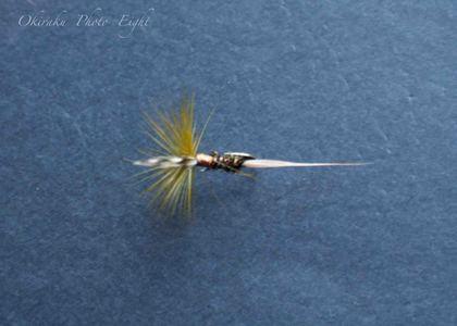 a-flyfishing9.jpg