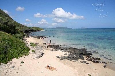 a-hawaibi-ti7.jpg