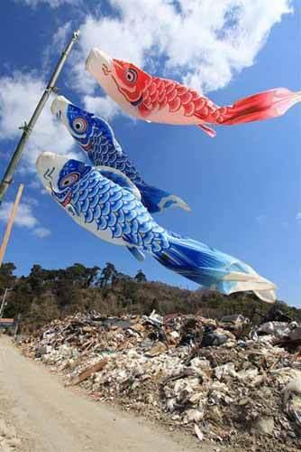 hisaitikoinobori2011.jpg