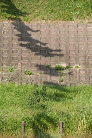 j-kodomonohi4.jpg
