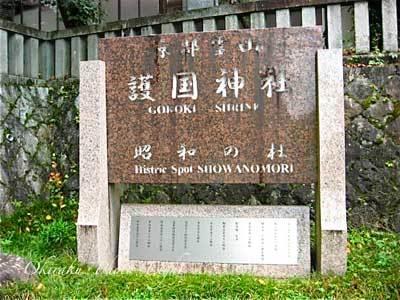 j-mitamamarturi11-1.jpg