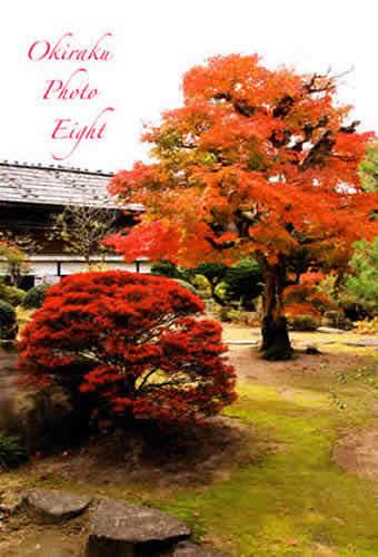 j-takayamajinya09-12.jpg